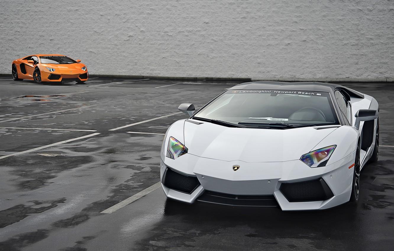 Photo wallpaper Lamborghini, Orange, White, Orange, White, LP700-4, Aventador, 2014