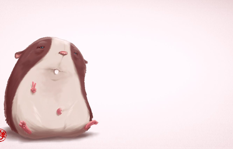 Photo wallpaper hamster, sitting, peace