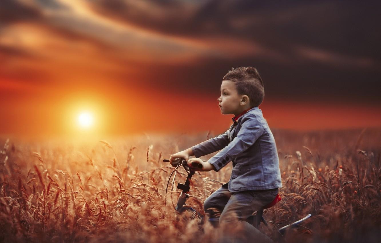 Photo wallpaper field, sunset, bike, mood, boy