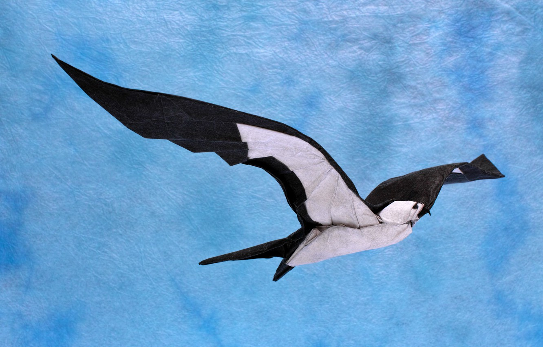 Barn swallow | Origami, Oiseau origami, Tutoriel d'origami | 850x1332