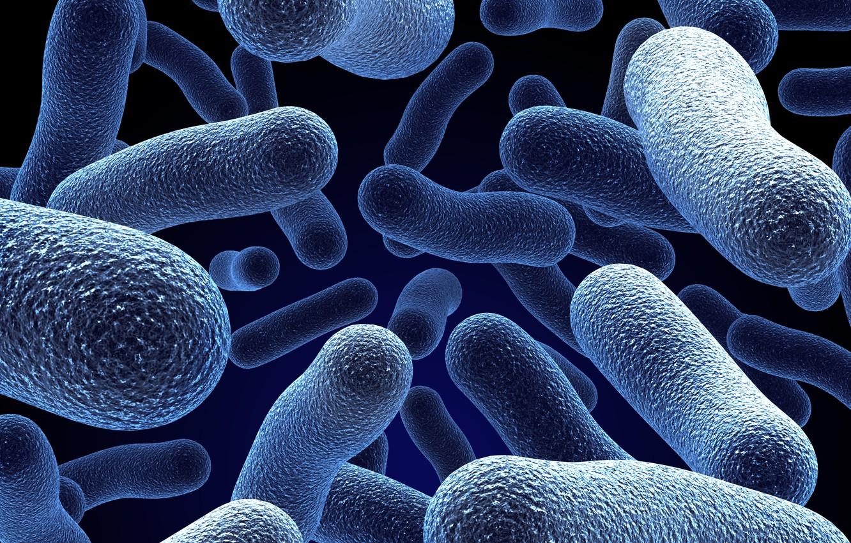 Photo wallpaper blue, Wallpaper, bionic, molecules