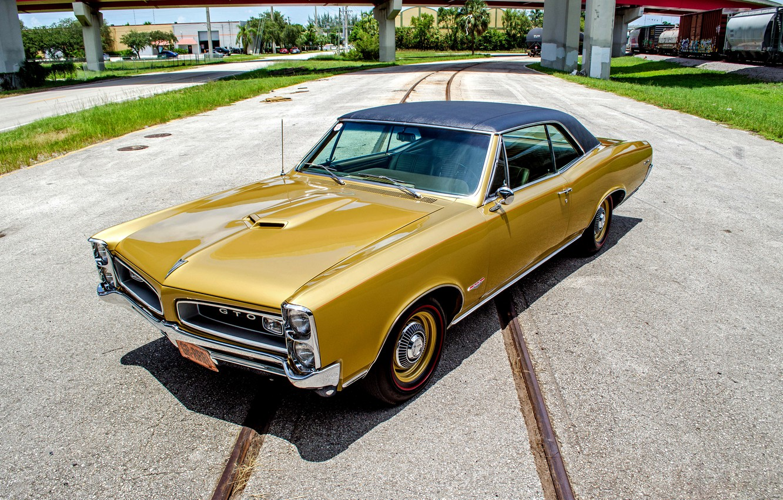 Photo wallpaper Coupe, Pontiac, GTO, 1966, Pontiac, Tempest, tempest