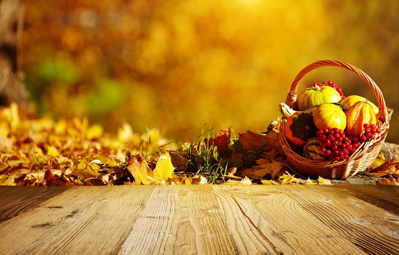 Photo wallpaper autumn, basket, pumpkin, leaves, Rowan