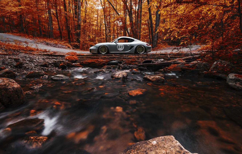 Photo wallpaper Porsche, Cayman, Orange, Side, View, Stance, Forest, Works