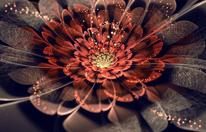 Photo wallpaper ART, PETALS, FLOWER, MESH, WEB, LIGHTS, ABSTRACTION, SPARKS
