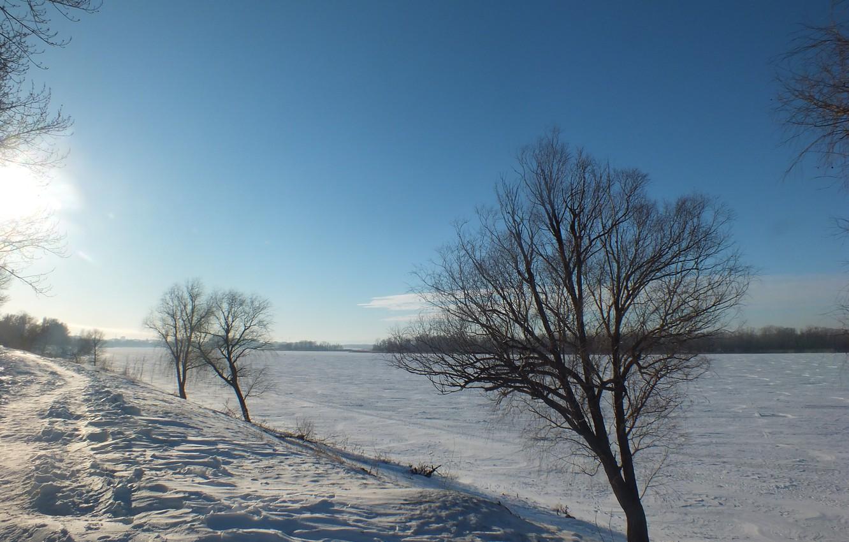 Photo wallpaper winter, snow, tree, promenade, Volga