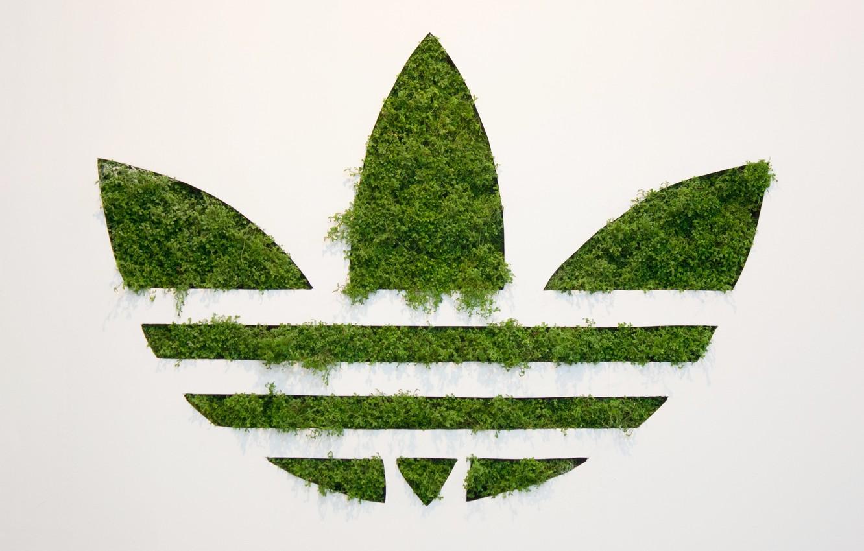 Wallpaper Grass Background Adidas Logo Adidas Originals