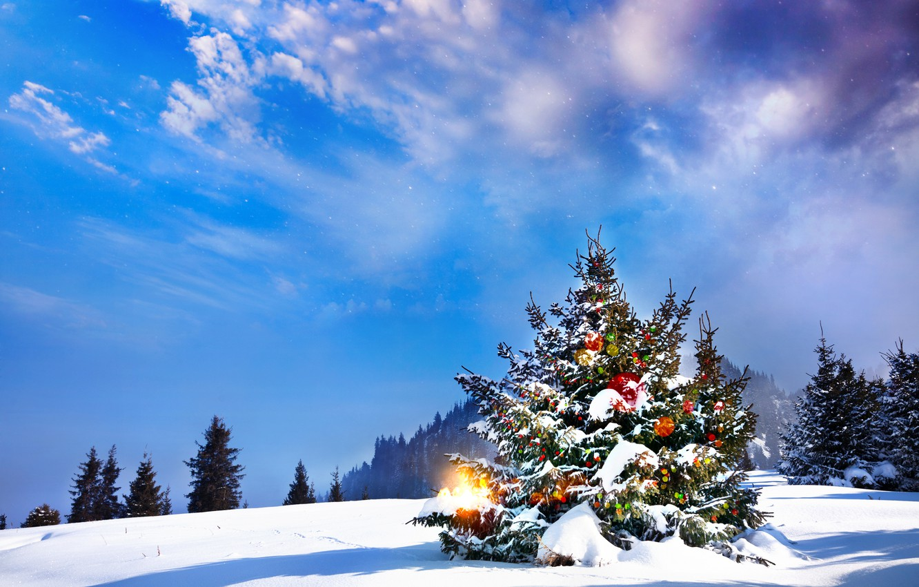 Wallpaper Winter Snow Tree New Year Christmas Christmas Landscape Winter Snow Tree Images For Desktop Section Novyj God Download