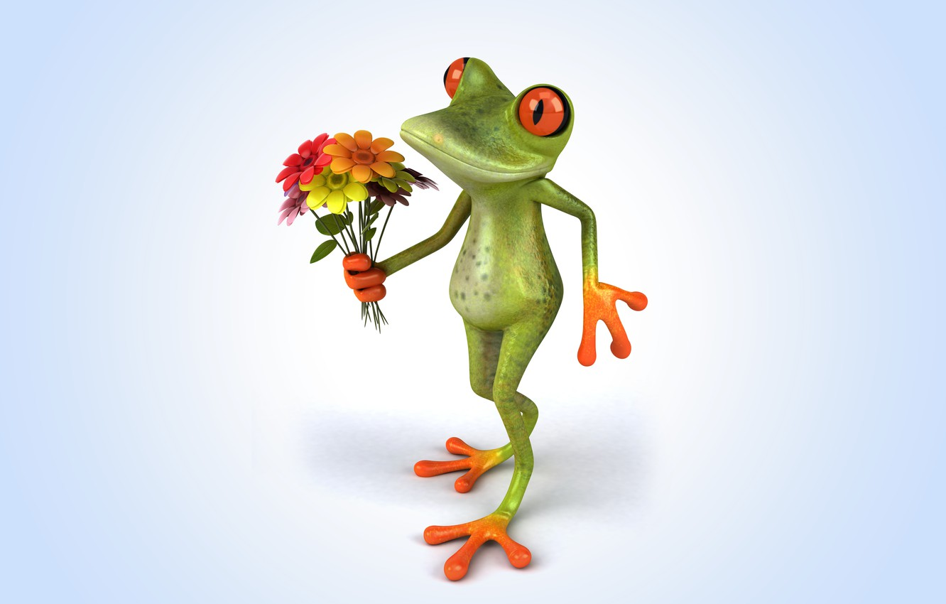 Photo wallpaper flowers, frog, frog, funny