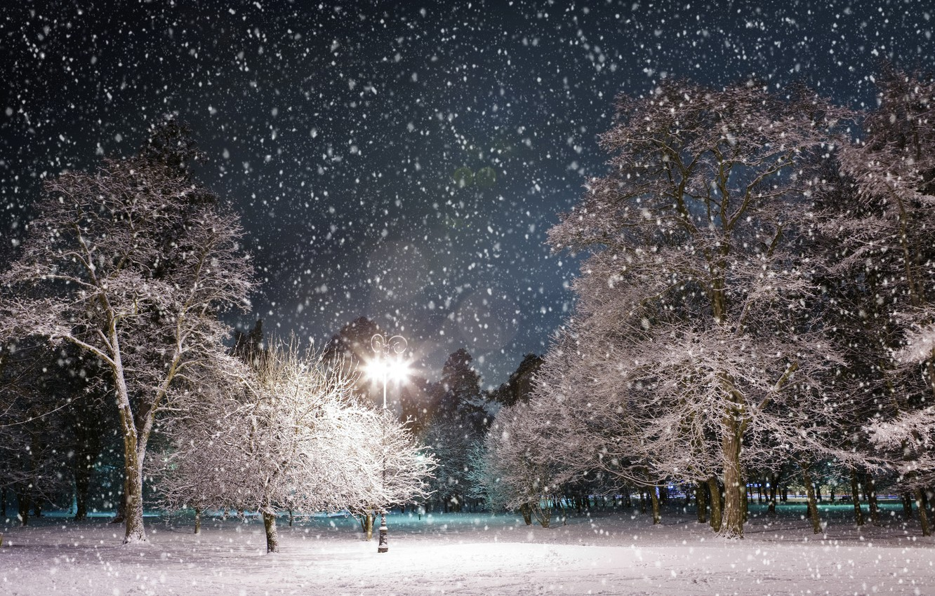 Photo wallpaper winter, snow, trees, night, Park, lantern