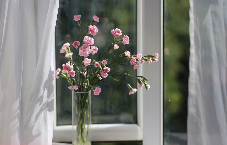 Photo wallpaper bouquet, window, vase, clove