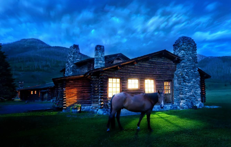 Photo wallpaper light, horse, House