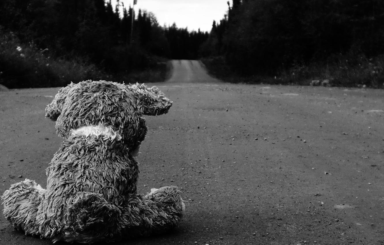 Photo wallpaper road, asphalt, Wallpaper, black and white, bear, plush, picture, different, image
