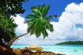 Picture stones, rocks, stay, nature, sea, tropics, sea, Palma, recreation, landscape, tropics, nature, palm, landscape