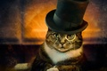Picture cylinder, monocle, cat