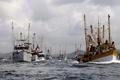 Picture sea, Republic, small, Dominican, court, fishing