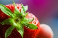 Picture drops, macro, strawberry, Colorful, Strawberry, the fruit