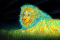 Picture the sky, grass, stars, color, Leo, mane