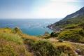 Picture sea view, nature, plants, shore, water, the ocean, the sky, rocks, landscape