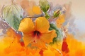 Picture flowers, picture, background