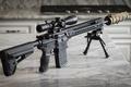 Picture weapons, MEGA 308, SPR, assault rifle