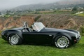 Picture Shelby, 427, Roadster, 1966, Cobra