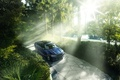 Picture light, 7 Series, BMW, forest, Alpina