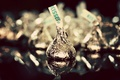 Picture macro, photo, the sweetness, candy, wrapper