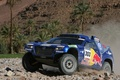 Picture palm trees, Volkswagen, Touareg Race, stones