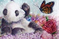 Picture flowers, bear, art, butterfly, Panda, rose