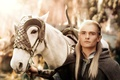 Picture the Lord of the rings, art, lord of the rings, Legolas, Orlando Bloom, horse