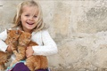Picture kid, smile, Girl, cats, other