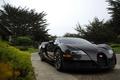 Picture Park, Bugatti, Veyron