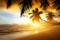 Picture sand, sea, beach, sunset, tropics, palm trees, shore, summer, beach, sea, ocean, coast, sunset, sand, ...
