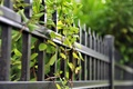 Picture summer, the fence, branches