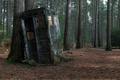 Picture Police Box, Tardis, Forest, Box, Tree