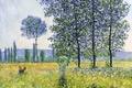 Picture trees, landscape, picture, meadow, poplar, Claude Monet, Sunlight Effect under the Poplars