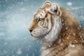 Picture winter, snow, tiger, art, Alena Ekaterinburg