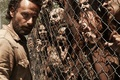 Picture wiring, Zombies, The Walking Dead