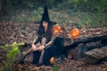 Picture pumpkin, Halloween, witch, the witch