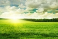 Picture the sun, the sky, grass, greens, clouds