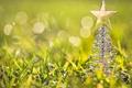 Picture grass, macro, toy, star, tree, tree, green, figure, bokeh