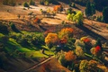 Picture forest, autumn, trees, nature, mountains, hut
