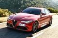Picture Dawn, Alfa Romeo, Alfa Romeo, Giulia