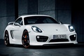 Picture 2013, Porsche, Cayman, Caiman, Porsche, TechArt