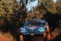 Picture Volkswagen, thickets, Touareg Race