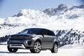 Picture car, snow, trees, mountain, slope, Land Rover, Range Rover, mountain, snow, Evoque, Autobiography