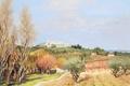 Picture trees, landscape, the city, tower, picture, hill, Marseille Dif, View of Saint-Paul-de-Vence
