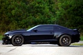 Picture drives, trees, camaro ss, profile, Camaro SS, black, Chevrolet, black, black, chevrolet