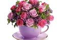Picture Cup, bouquet, roses, Bouquets, Roses